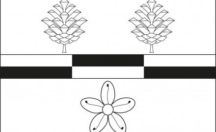 Návrh vlajky pro obec Hranice.