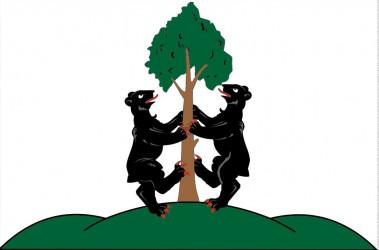 Vlajka pro město Přimda